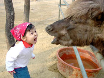 Donkey vs Girl